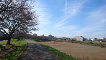 blog_yokohama_181221_01.jpg
