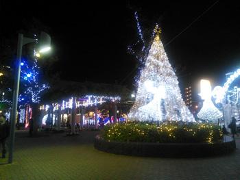 fujieda_20121126_01.jpg