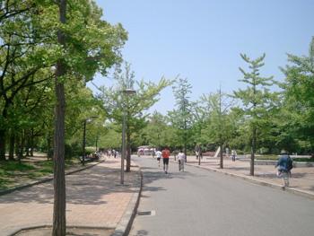 nanba_20120509_02.jpg