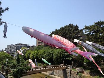 nishinomiya_20120509_01.jpg
