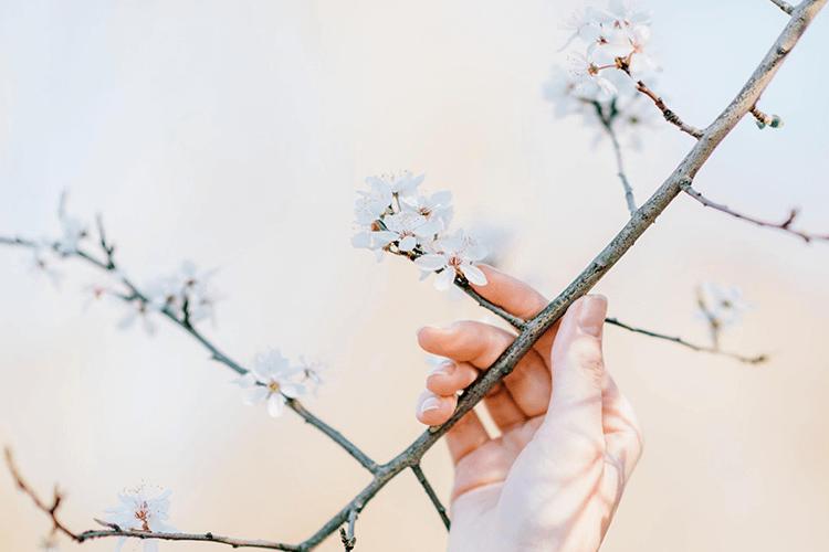 なぜ春に不調を感じやすいのか?