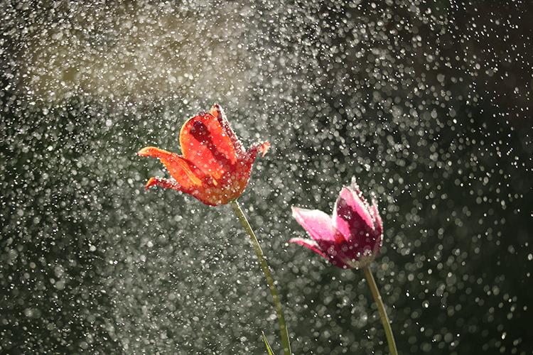 梅雨は肌トラブルが多い季節